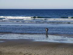 2015.05.02-18.02.08 (Pak T) Tags: ocean sea beach waves shore boardwalk hull metaldetector nantasketbeach zuikodigital olympus1260mm