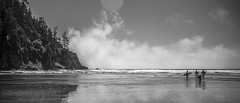 Oregon surfers (Samantha.Ariel) Tags: ocean bw white black beach fog oregon coast pacific cove pnw smugglers smugglerscove