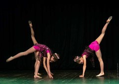 20150606-_D8H9326 (ilvic) Tags: dance danza danse tanz dans taniec