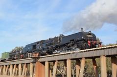 6029 (rob3802) Tags: train rail railway loco steam nsw locomotive wagga junee waggawagga steamlocomotive garratt 4501 murrumbidgeeriver 6029 beyerpeacock nswgr nswr beyergarratt 45class 60class