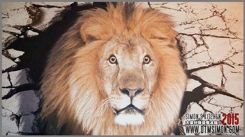 獅子甜點06.jpg