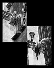 12 - Metz Cathédrale Saint-Etienne Gargouilles (melina1965) Tags: blackandwhite bw sculpture church collage nikon noiretblanc façades mosaic collages churches july mosaics gargoyle gargoyles lorraine juillet église sculptures gargouille façade metz moselle mosaïque mosaïques 2015 gargouilles églises d80