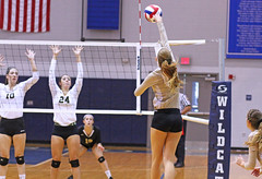 IMG_8103 (SJH Foto) Tags: girls volleyball high school york delone catholic team teen teenager net battle spike block action shot jump midair