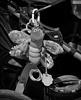 Buggy Bug (arbyreed) Tags: arbyreed bw baby babystroller babybuggy babycarriage toy babytoy toybug