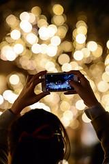 Taking a memory (H.H. Mahal Alysheba) Tags: night tokyo snapshot christmas illumination bokeh dof afs nikkor 105mmf14 nikon city