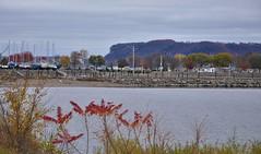 Lake City, Minnesota (slim_fury) Tags: mississippiriver minnesota fallfoliage lakecity lakepepin