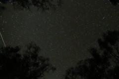 ISS over Menindee (www.davidmolloyphotography.com) Tags: iss menindee kinchega kincheganationalpark star satellite