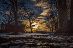 sunnyday (JimTH53) Tags: sun trees linnotus finland snow