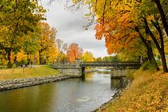 Djurgårdsbrunn 18:e oktober 2016 (arne.lindgren) Tags: stockholm djurgårdsbrunnsbron djurgårdsbrunnskanalen october autumn bridge trees leaves