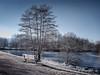 Frozen Environment - Infrared (gporada) Tags: infrared infrarot sonyf828 f828 sonydscf828 carlzeisslens frozen gefroren eis ice pond teich heliopanrg645 heliopan welltaken ngc gporada 2017