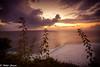 "Bali-8229 (Nikhil Jhaveri Photography) Tags: bali landscape scenic sunset ocean outdoor ""canonflickraward canonflickraward breathtakinglandscapes"