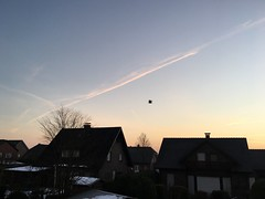 flying (raventhelen) Tags: roof blue rising sun clouds trails beautiful sunrise sky flying black bird