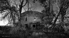 Timeline (Chris Lakoduk) Tags: oldhouse abandonedhouse abandoned derelict decay oldhome veryoldplace forgottenplaces losthome lostplaces blackandwhite photography blackandwhitephotography broken trees structures brickandmortar house home windows entrance composition death lifeanddeath life afterlife