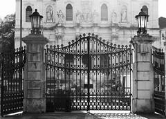Estrela Garden Iron Doors