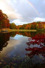 A West Virginia Autumn (MarcusDC) Tags: lake autumn babcockstatepark westvirginia reflection explore68january182017