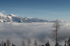 Valley fog (No_Mosquito) Tags: valley fog mountains scenery landscape snow ice frost cold winter morning austria alps ennstal canon powershot g7x mark ii trees europe styria blue reiteralm outdoor