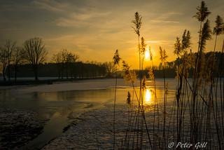 Kleiner Bischofsweiher, Sonnenuntergang