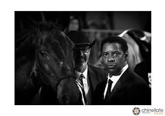 Denzel Washington (ChinellatoPhoto) Tags: venezia venice venicefilmfestival mostradelcinemadivenezia ritratto portrait blackwhite cinema attore attrice regista director venezia73 denzelwashington