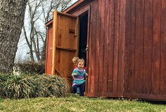The Great Escape (Pejasar) Tags: childrenescape storageshed backyard grandkids fun play home joy children grandchildren escape grass tress