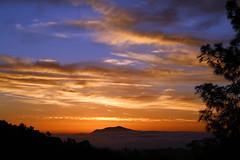 2017_02_15_sb-sunrise_76 (dsearls) Tags: 20170215 sunrise santabarbara southcoast theriviera blue pink orange red silhouette dawn stratus altostratus contrails clouds mountain fog