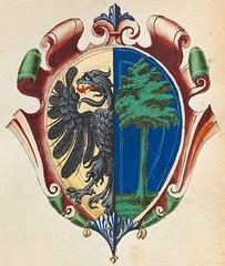 Anglų lietuvių žodynas. Žodis marasca reiškia <li>marasca</li> lietuviškai.