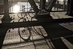 HAM_5866 - 2015-06-30 um 19-23-32 (C_Baltrusch) Tags: delta master record brakes singlespeed colnago campagnolo gilco bikespresso