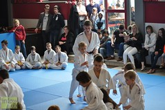 Judo-habay030