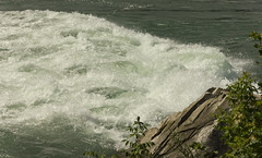 Niagara Glen_23 (rumimume) Tags: ontario canada nature canon river niagarafalls photo still walk sigma glen gorge niagaraglen niagarariver 2015 550d t2i rumimume