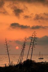 Vacaciones, YA! (Antonio_Luis) Tags: parque contraluz atardecer mar mediterraneo barco natural playa andalucia amanecer cielo silueta almeria vacaciones nube cabodegata genoveses pitas