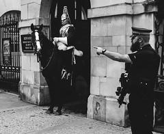 (ChrisJWake) Tags: london londoncity london2016 westminster queens guards horse gun armed police uk england photojournalism photojournalist streetphotography streetlife blackandwhite blackwhite bnw monochrome nikon d4s nikkor 50mm 50mmf14g portrait portraiture candid