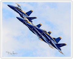 """United States Navy Blue Angels #1 Through #4 Swinging By To Say """"Hi"""" (Hawg Wild Photography) Tags: united states navy blue angels usn naval aviation seattle seafair 2014 military aircraft air show airshow flight demonstartion team boeing fa 18 hornet terrygreen nikon nikon600mmvr nikond4s mcdonnell douglas hawg wild photography"""