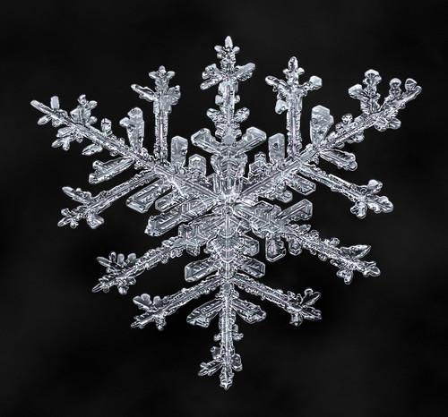 Snowflake-a-Day #32