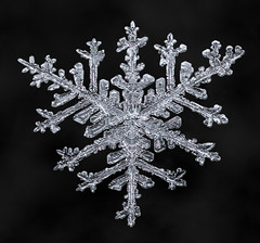 Snowflake-a-Day #32 (Don Komarechka) Tags: snowflake snow flake triangle trigonal winter macro focusstacking frozen sky mpe fractal