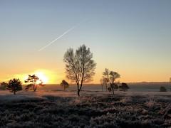 IMG_6499 (marcoderksen) Tags: mtb atb mountainbike veluwe gelderland