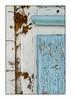 Du lierre à la porte (Rémi Marchand) Tags: biganos gironde bassin arcachon port cabanon aquitaine