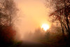 A New Day Has Dawn (sdl39hogger) Tags: autumnsunrise autumn sunrise wisconsin northwoods goldenhour fog foggy winterwisconsin sawyercounty nationalgeographic