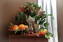 Morning Light (Esther Spektor - Thanks for 12+millions views..) Tags: stilllife naturemorte bodegon naturezamorta stilleben naturamorta composition creativephotography arrangement artisticphoto morning table plant berry bouquet food citrus lemon tangerine curtain cup spoon tray goblet crystal metal wooden pattern availablelight white green orange silver yellow brown estherspektor canon