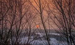It came in the evening .. (tferi666) Tags: winter beautiful best nice fantastic nature magic colors amazing ngc sony ilce next alpha a6300 sonyflickraward sonyflickrawardgold 18105mm hungary magyar zemplénhegység