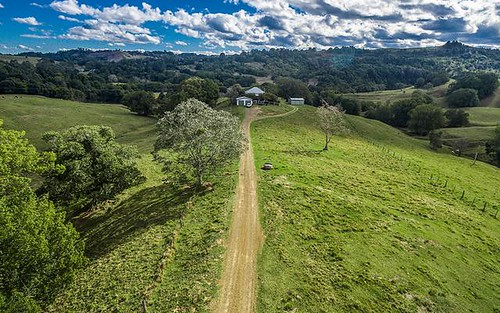 201 Terania Creek Road, The Channon NSW 2480