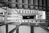 S17X4428 (Daegeon Shin) Tags: fujifilm xpro2 sigma quantaray 24mm 24mmf28 bw staircase escalera stairs 365 후지필름 시그마 콴타레이 계단 층계 adaptor
