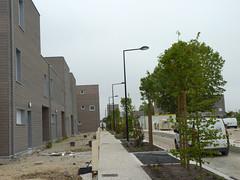 Liberation - rue Rosa Park