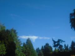 I Gotta feeling (rjgivnin Sr) Tags: cloudage