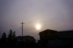 Sunset (haru__q) Tags: sunset sony  a7 summaron leitz