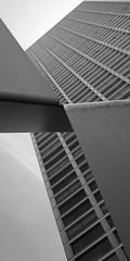 - (13 1 20 8 9 5 21 20 8 15 13 1 19 19 5 20) Tags: porto fujifilm europeanunion planetearth soutodemoura eduardosoutodemoura xe2 xmount xflens xf1855mm xtranscmos2 exrprocessor2