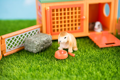 Brown lop wishes for more pellets (janetsaw) Tags: rabbit bunny animal toy miniature figure hutch terra schleich battat