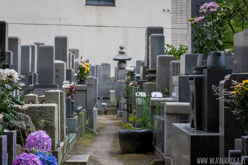 Małe cmentarze w Hiroshimie
