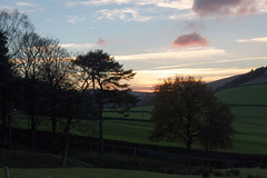 December dusk (Blue Pelican) Tags: glossop derbyshire december dusk sunset trees fields countryside