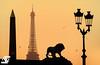 Ombres Chinoises (A.G. Photographe) Tags: anto antoxiii xiii ag agphotographe paris parisien parisian france french français europe capitale placedelaconcorde obélisque toureiffel eiffeltower lion d810 nikon nikkor 70200vrii goldenhour shadow contrejour