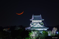 Inuyama-castle & crescent moon (稲垣一志) Tags: aichipref inuyamacastle inuyamacity japan sns castle crescentmoon moon nationaltreasure night nightview nightscape 三日月 国宝 城 夜 夜景 愛知県 日本 月 犬山城 犬山市