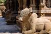 Nandi (Bull) in Shiva temple in South India (Mumbai Lensman) Tags: ancient basrelief shiva sandstone bull tamil tamilnadu sculpture kailasanathartemple indian india temple architecture hinduism spirituality kanchipuram nandi hindu